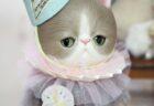 ネコちゃんドール 茶トラ