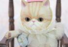 オーダー作品 ネコちゃんドール 茶トラ