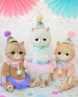 三匹のネコちゃんドール キジトラ 白 茶トラ