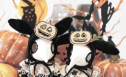 スカルッタちゃんたちの楽しいハロウィン♪